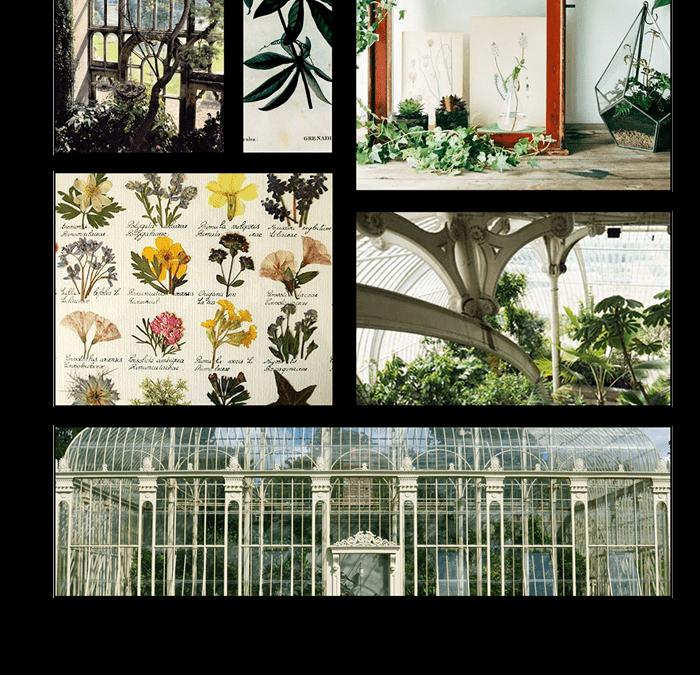 Histoire de la ligne Botanique